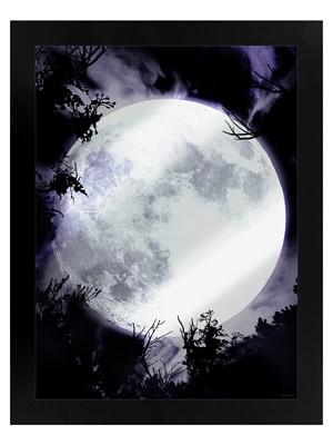 Framed Celestial Moon Mirrored Tin Sign