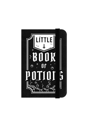 Little Book Of Potions Mini Notebook