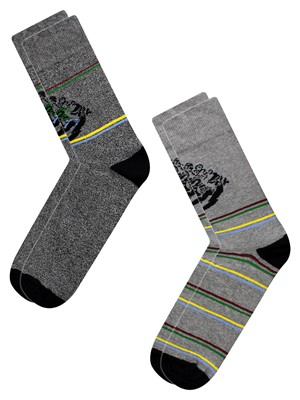 Harry Potter 2 Pack Men's Socks