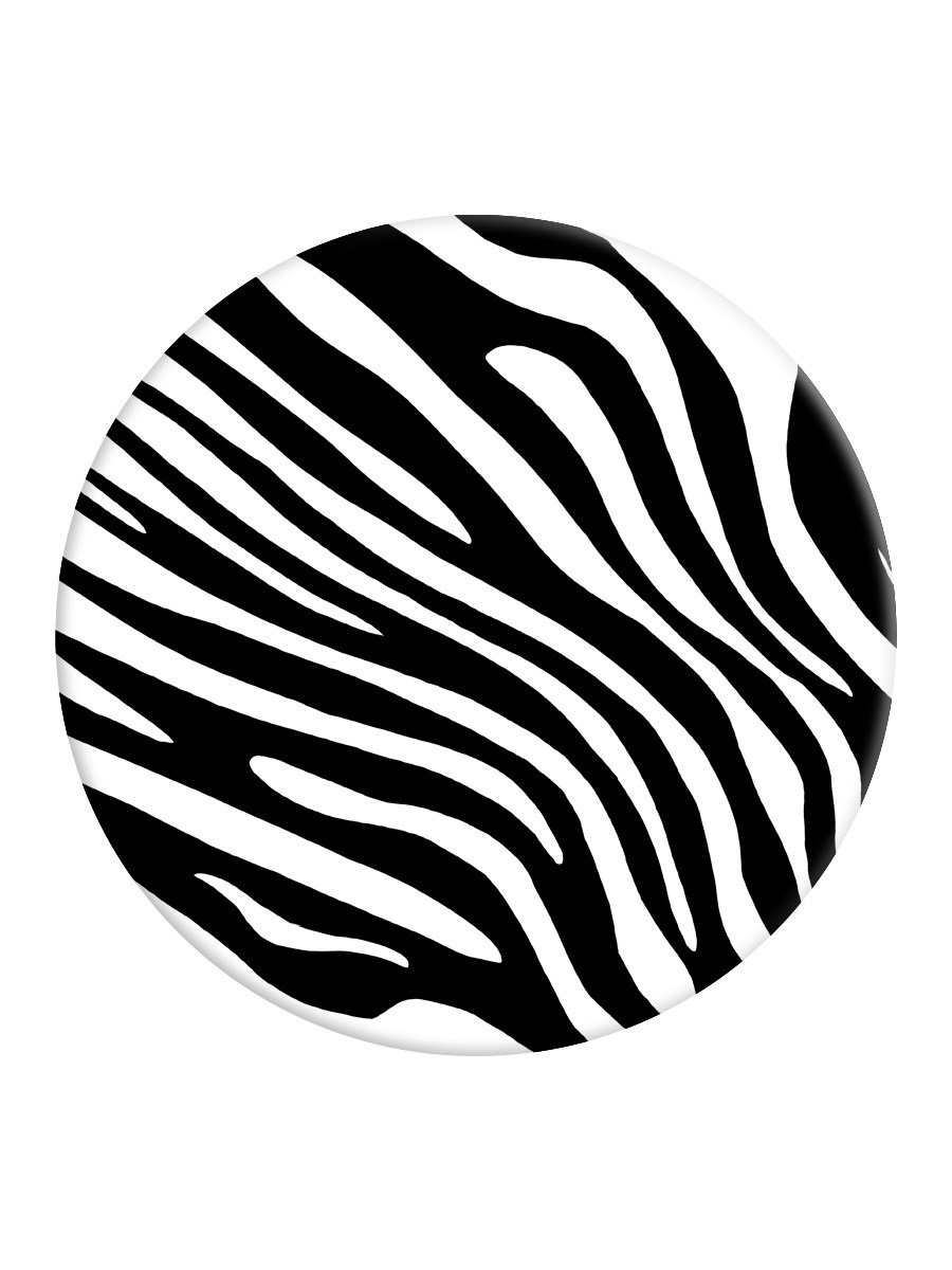 How the Zebra Got his Stripes  African San Story