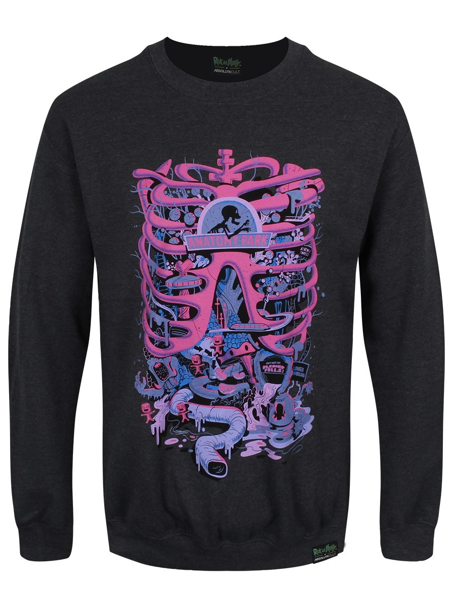 Rick And Morty Anatomy Park Men\'s Grey Sweatshirt - Buy Online at ...