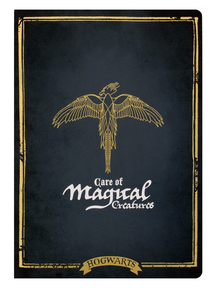 Harry Potter Hogwarts Care Of Magical Creatures Exercise Book Buy Online At Grindstore Com